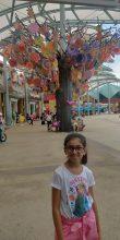 Tisha Sharma, 10, Jaipur