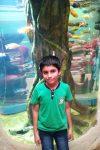 D Sanjith, 9, Chennai