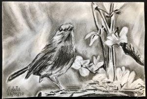 Shading bird Art with Sara by Aditi UK Bookosmia