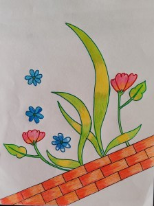 Art- Flower drawings - why I love them