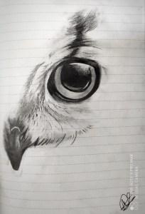 Joker to owl - Sketch drawings to remember