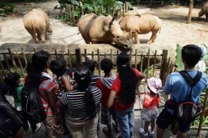 Singapore trip - My adventure at the Singapore zoo